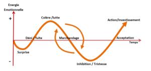 Courbe de deuil - Accompagnement de transition en entreprise
